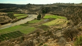 Greening Ethiopia's Highlands: A New Hope for Africa