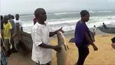 Liberia West Africa Fisheries Project Helps Discourage Illegal Fishing, Increasing Opportunities for Local Fisherman to Earn a Living