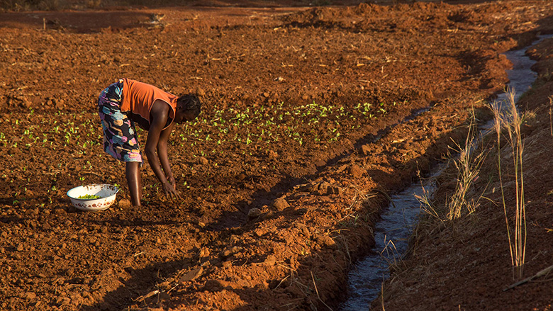 Social Safety Nets In Mali Protecting The Poorest And Building - The porest