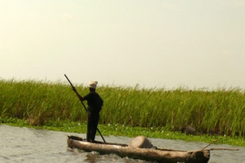 &#84&#111&#103&#111&#32&#70&#105&#115&#104&#105&#110&#103&#32&#67&#111&#109&#109&#117&#110&#105&#116&#121&#32&#84&#104&#114&#105&#118&#101&#115&#32&#65&#102&#116&#101&#114&#32&#67&#97&#110&#97&#108&#32&#82&#101&#118&#105&#116&#97&#108&#105&#122&#97&#116&#105&#111&#110&#32&#69&#110&#100&#115&#32&#70&#114&#101&#113&#117&#101&#110&#116&#32&#70&#108&#111&#111&#100&#105&#110&#103
