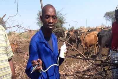 &#80&#114&#111&#116&#101&#99&#116&#105&#110&#103&#32&#72&#101&#114&#100&#115&#44&#32&#76&#105&#118&#101&#108&#105&#104&#111&#111&#100&#115&#32&#105&#110&#32&#90&#97&#109&#98&#105&#97