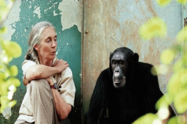 A Conversation with Jane Goodall on the Wildlife Poaching Crisis in Africa