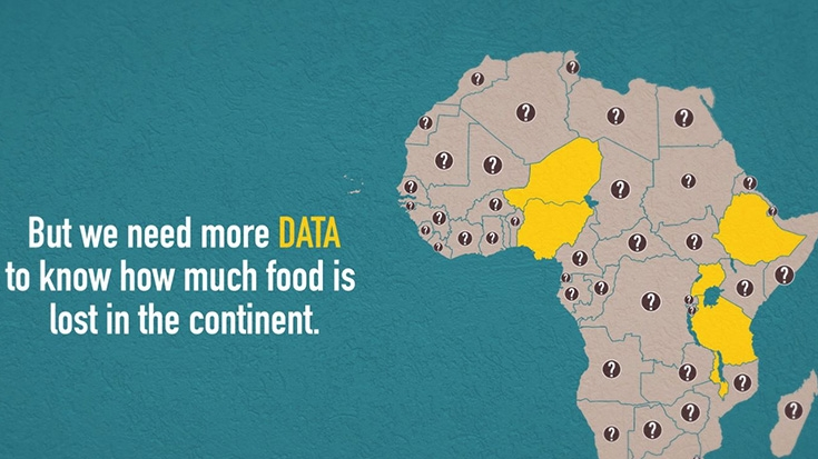 Telling Myths from Facts: Africa's Agricultural Data Gap