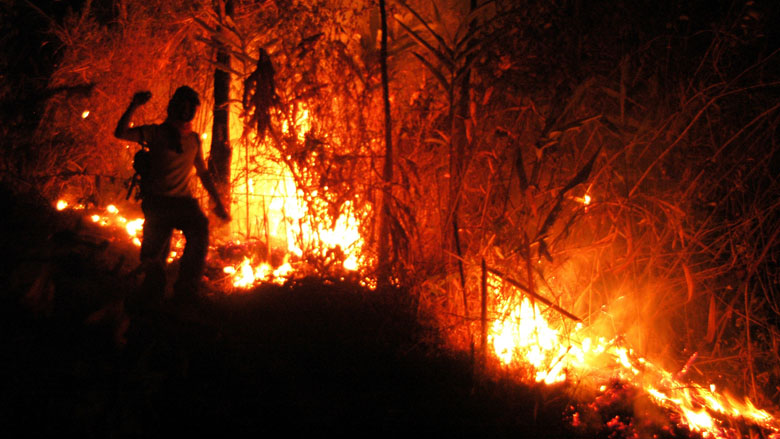 Indonesia's Forest Fire Crisis
