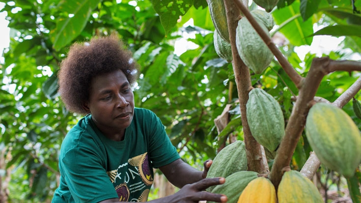 Gender issues in monitoring and evaluation in agriculture a toolkit
