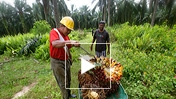 Smart Natural Resource Management: Lessons and Challenges in Malaysia