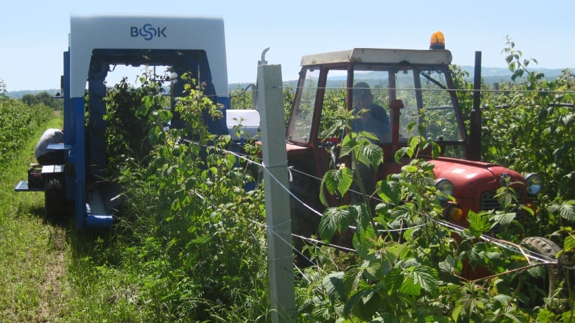 &#65&#110&#32&#65&#105&#114&#32&#66&#101&#114&#114&#121&#32&#104&#97&#114&#118&#101&#115&#116&#101&#114&#32&#100&#101&#118&#101&#108&#111&#112&#101&#100&#32&#105&#110&#32&#97&#32&#108&#111&#99&#97&#108&#32&#99&#111&#109&#112&#97&#110&#121&#32&#97&#115&#32&#112&#97&#114&#116&#32&#111&#102&#32&#97&#110&#32&#105&#110&#110&#111&#118&#97&#116&#105&#111&#110&#32&#112&#114&#111&#103&#114&#97&#109&#32&#115&#117&#112&#112&#111&#114&#116&#101&#100&#32&#98&#121&#32&#109&#97&#116&#99&#104&#105&#110&#103&#32&#103&#114&#97&#110&#116&#115&#44&#32&#83&#101&#114&#98&#105&#97&#46