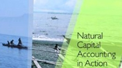 Natural Capital Accounting in Action