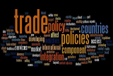 Trade policy wordle