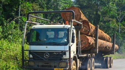 &#76&#111&#103&#103&#105&#110&#103&#32&#116&#114&#117&#99&#107&#32&#105&#110&#32&#71&#97&#98&#111&#110&#46&#32&#80&#104&#111&#116&#111&#58&#32&#106&#98&#100&#111&#100&#97&#110&#101&#32&#47&#32&#70&#108&#105&#99&#107&#114&#32&#67&#114&#101&#97&#116&#105&#118&#101&#32&#67&#111&#109&#109&#111&#110&#115&#32&#76&#105&#99&#101&#110&#115&#101&#46