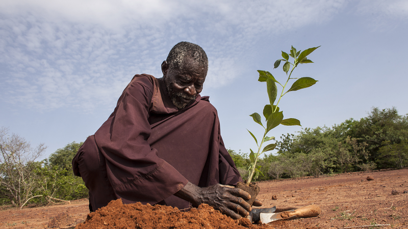 &#89&#97&#99&#111&#117&#98&#97&#32&#83&#97&#119&#97&#100&#111&#103&#111&#44&#32&#34&#116&#104&#101&#32&#109&#97&#110&#32&#119&#104&#111&#32&#115&#116&#111&#112&#112&#101&#100&#32&#116&#104&#101&#32&#100&#101&#115&#101&#114&#116&#34&#32&#105&#110&#32&#66&#117&#114&#107&#105&#110&#97&#32&#70&#97&#115&#111&#46&#32&#40&#80&#104&#111&#116&#111&#58&#32&#65&#110&#100&#114&#101&#97&#32&#66&#111&#114&#103&#97&#114&#101&#108&#108&#111&#32&#47&#32&#84&#101&#114&#114&#65&#102&#114&#105&#99&#97&#44&#32&#87&#111&#114&#108&#100&#32&#66&#97&#110&#107&#41