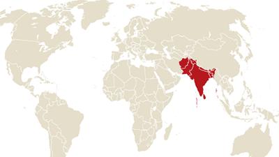南アジア地域