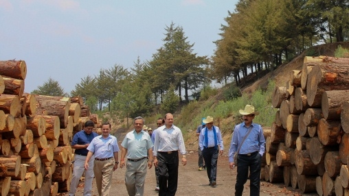 Indian delegation visiting a sustainable wood factory in Oaxaca, Mexico