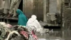 Pakistan Floods: World Bank's Response