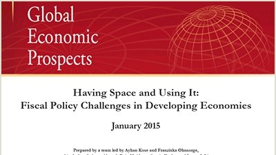Fiscal Policy Challenges in Developing Economies