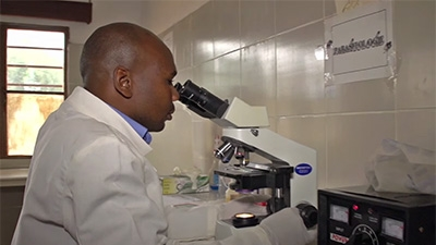 &#82&#119&#97&#110&#100&#97&#32&#97&#110&#100&#32&#82&#101&#103&#105&#111&#110&#97&#108&#32&#76&#97&#98&#32&#78&#101&#116&#119&#111&#114&#107&#32&#87&#111&#114&#107&#32&#84&#111&#103&#101&#116&#104&#101&#114&#32&#116&#111&#32&#80&#114&#101&#118&#101&#110&#116&#32&#69&#112&#105&#100&#101&#109&#105&#99&#115