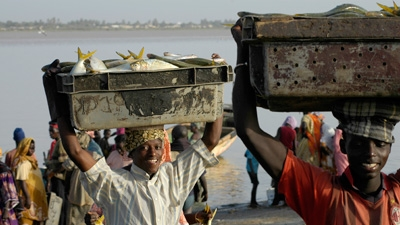 In the Senegal River Basin, Fish and Families are Making a Come-back