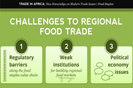 &#67&#111&#117&#114&#115&#101&#58&#32&#69&#120&#112&#108&#111&#114&#105&#110&#103&#32&#77&#111&#100&#101&#114&#110&#32&#84&#114&#97&#100&#101&#32&#73&#115&#115&#117&#101&#115&#32&#105&#110&#32&#65&#102&#114&#105&#99&#97