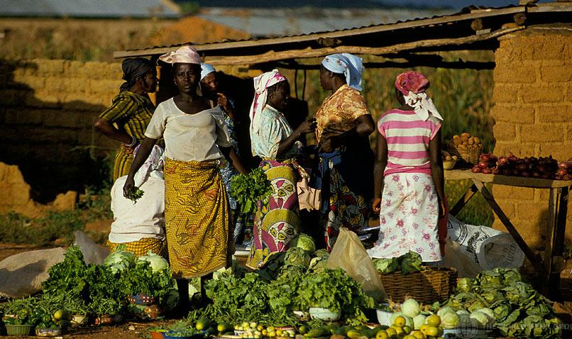 Crise alimentaire | � Banque mondiale