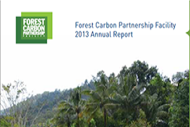 &#67&#111&#118&#101&#114&#32&#111&#102&#32&#116&#104&#101&#32&#70&#111&#114&#101&#115&#116&#32&#67&#97&#114&#98&#111&#110&#32&#80&#97&#114&#116&#110&#101&#114&#115&#104&#105&#112&#32&#70&#97&#99&#105&#108&#105&#116&#121&#39&#115&#32&#65&#110&#110&#117&#97&#108&#32&#82&#101&#112&#111&#114&#116&#32&#102&#111&#114&#32&#50&#48&#49&#51