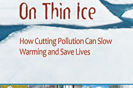 &#67&#111&#118&#101&#114&#32&#111&#102&#32&#79&#110&#32&#84&#104&#105&#110&#32&#73&#99&#101&#58&#32&#72&#111&#119&#32&#67&#117&#116&#116&#105&#110&#103&#32&#80&#111&#108&#108&#117&#116&#105&#111&#110&#32&#99&#97&#110&#32&#83&#108&#111&#119&#32&#87&#97&#114&#109&#105&#110&#103&#32&#97&#110&#100&#32&#83&#97&#118&#101&#32&#76&#105&#118&#101&#115
