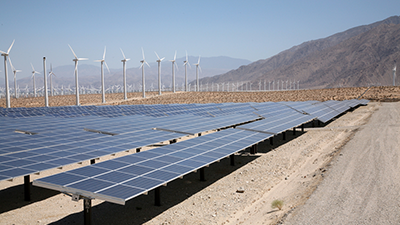 &#65&#32&#119&#105&#110&#100&#32&#97&#110&#100&#32&#115&#111&#108&#97&#114&#32&#102&#97&#114&#109&#32&#105&#110&#32&#80&#97&#108&#109&#32&#83&#112&#114&#105&#110&#103&#115&#44&#32&#67&#97&#108&#105&#102&#111&#114&#110&#105&#97&#46&#32&#45&#32&#80&#104&#111&#116&#111&#58&#32&#83&#104&#117&#116&#116&#101&#114&#115&#116&#111&#99&#107