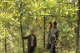 China: Integrating Forest Development with Biodiversity Conservation and Carbon Reduction