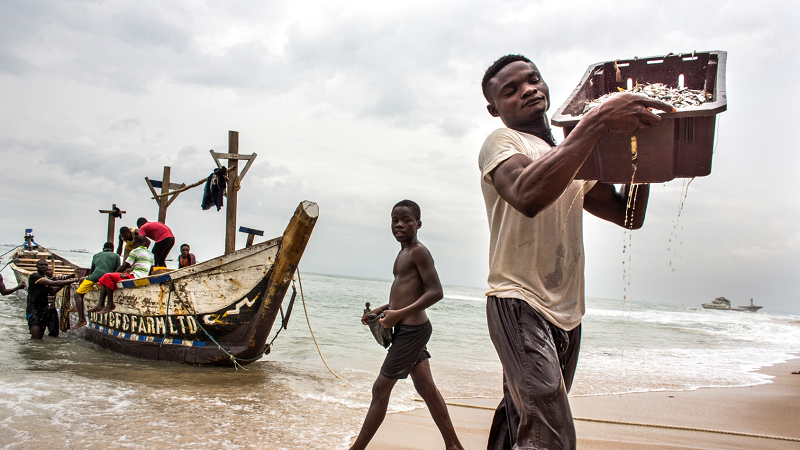 Oceans, Fisheries and Coastal Economies