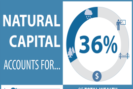 Did You Know? Natural capital accounts for 36% of total wealth in developing countries.