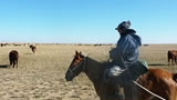 Bringing Kazakh Drylands Back to Life