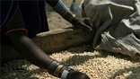 &#67&#108&#105&#109&#97&#116&#101&#32&#67&#104&#97&#110&#103&#101&#44&#32&#65&#103&#114&#105&#99&#117&#108&#116&#117&#114&#101&#32&#97&#110&#100&#32&#70&#111&#111&#100&#32&#83&#101&#99&#117&#114&#105&#116&#121&#32&#105&#110&#32&#84&#97&#110&#122&#97&#110&#105&#97&#32&#169&#79&#120&#102&#97&#109&#32&#73&#110&#116&#101&#114&#110&#97&#116&#105&#111&#110&#97&#108