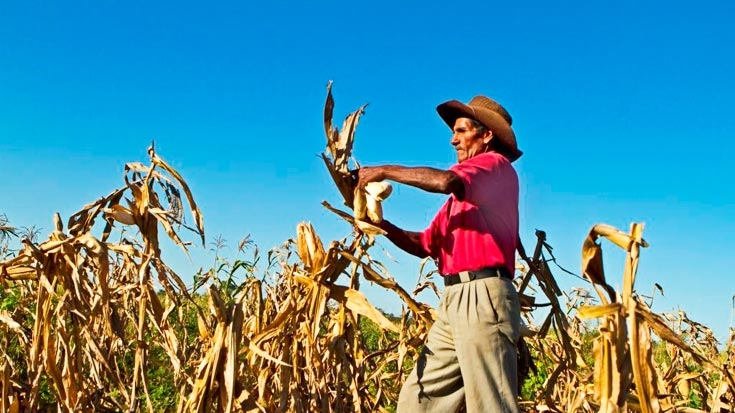 Providing Productive Agricultural Land for the Poor in Bolivia