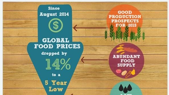 High food prices and their contribution to obesity?