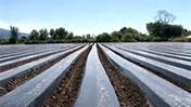 Agua para la producción en Argentina