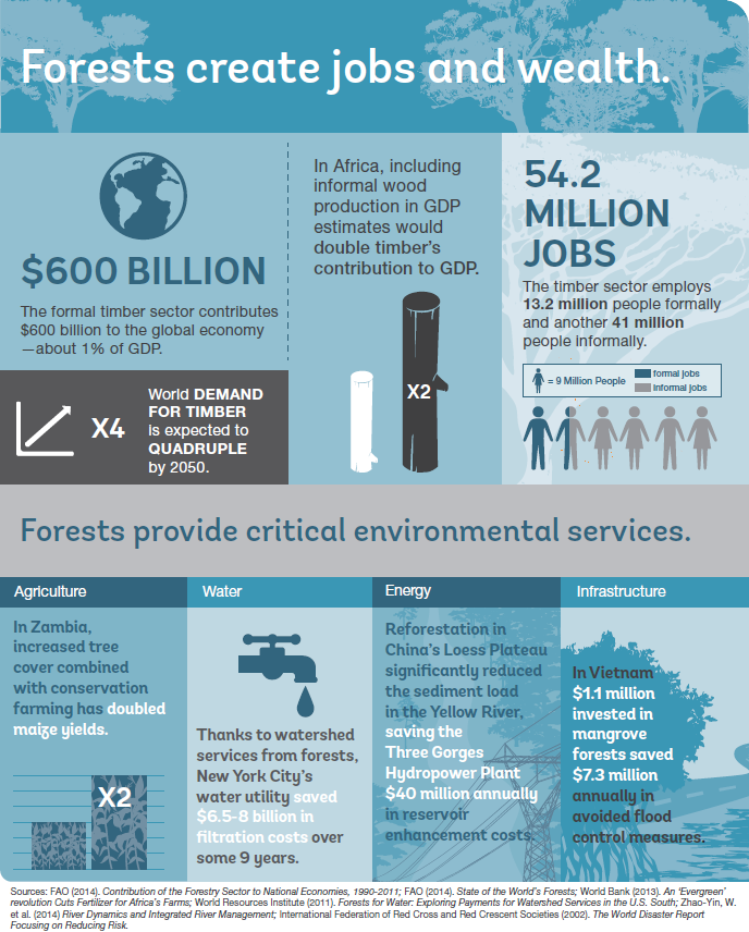Forests Create Jobs Infographic