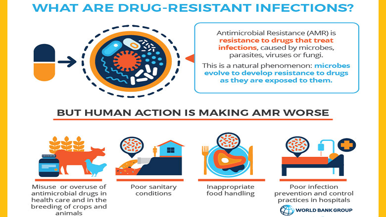Drug Resistant Infections: A Threat to Our Economic Future