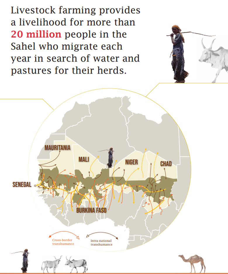 Full infographic: Supporting Pastrolism In the Sahel: Joint Action for Shared Challenges