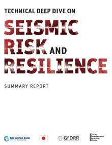 Seismic Risk and Resilience Summary Report