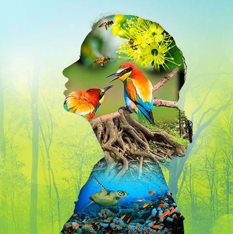 Invest_in_Nature_promo_woman_silouette_nature