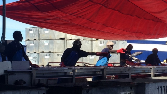 Solomon Islands: Sustainable Fisheries and Jobs