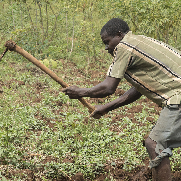 A farmer tills his farm near Kisumu, Kenya.