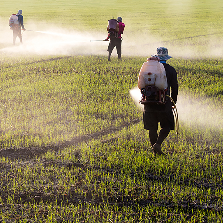 agricultural pollution The effects of pollution taxes and agricultural subsidies are both captured • output quantity, consumer surplus, government budget, and social welfare are all addressed.