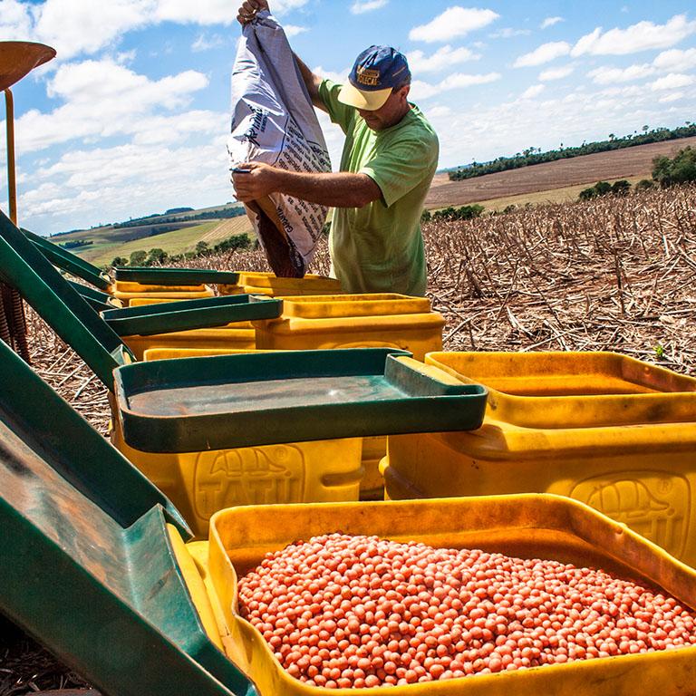 A farmer loads soybean seeds into a planter machine in Parana, Brazil.