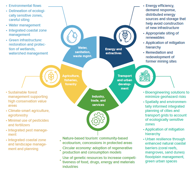 infographic examples of integrating nature into key economic factors