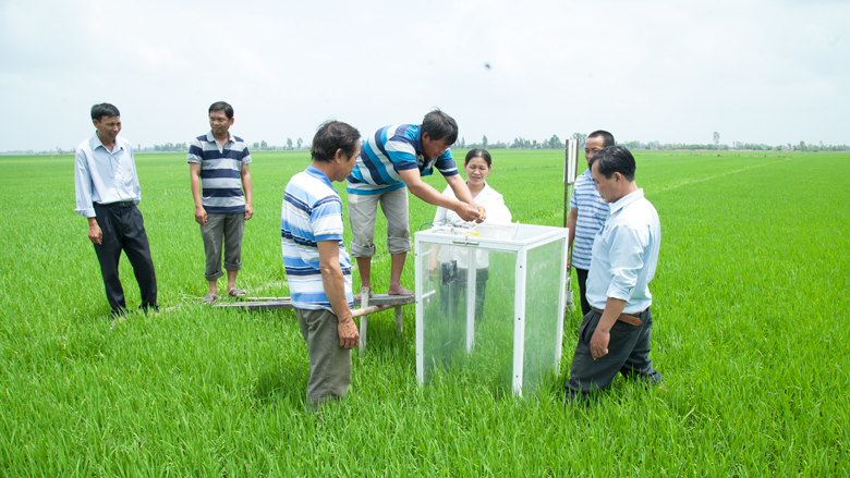Vietnam: Sustainable Farming for Higher Productivity and a Better Environment