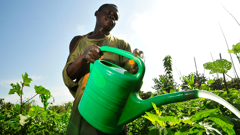 Smallholder farmers will be key to agricultural -- and economic -- transformation in Africa.  Photo: Neil Palmer / CIAT