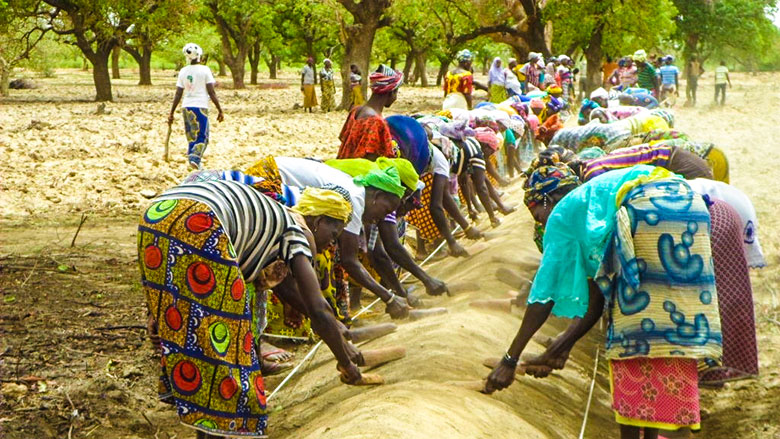 food security world bank pdf