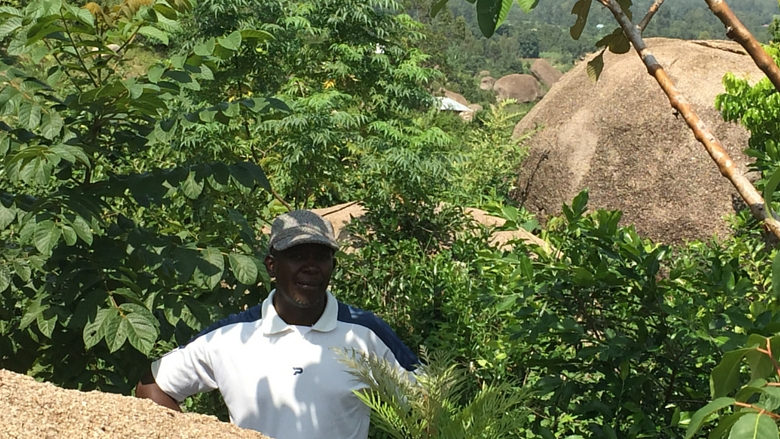 Kenya. Kajulu Hills restoration