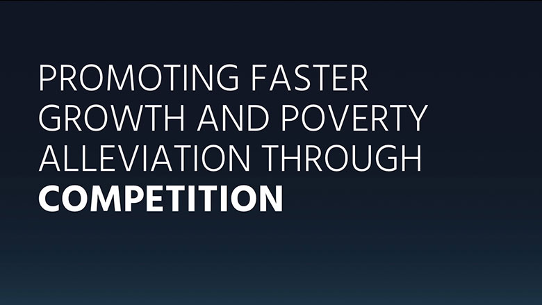 Promoting Faster Growth and Poverty Alleviation through Competition