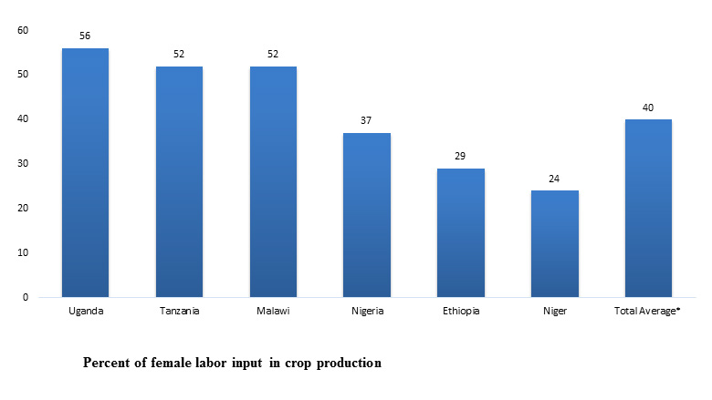 Women, Agriculture and Work in Africa